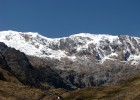 Forests of Polylepis spp trees in a proposed private conservation area at the foot of glaciers in the Ancash region