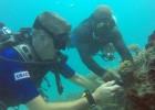 """Volunteer """"citizen-scientists"""" in Maldives monitor marine biodiversity."""