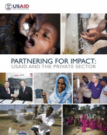 Partnering for Impact Report: USAID and the Private Sector