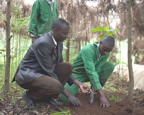 Mariaini bunge chair George Ngethe (suit jacket) works at the youth group's nursery.