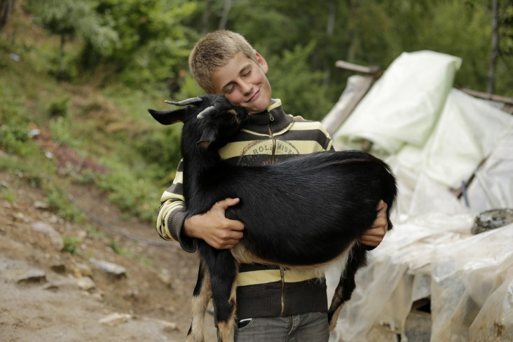 This boy's family herds livestock in the summer in Livadhet e Gjarpërit, Valbona valley, Albania.