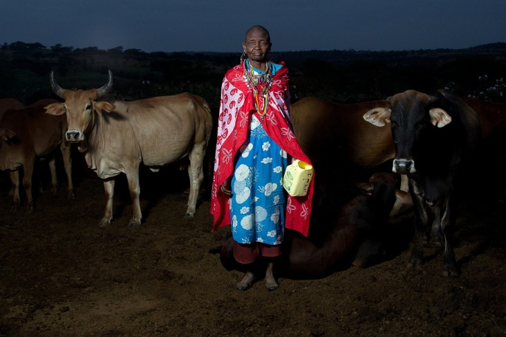 Thousands of Maasai women now have a reliable market for their milk thanks to a pioneering cooperative in Kenya.