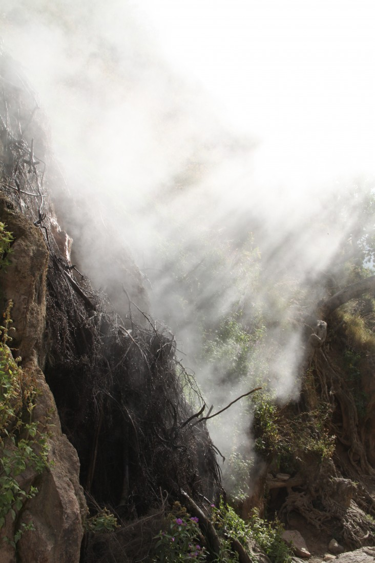 Natural geothermal steam (fumarole) rises from the ground in a ravine within the Corbetti Caldera.