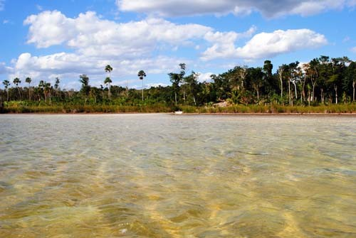 A USAID-supported carbon sequestration project in Quintana Roo, Mexico, helps protect sinkholes and lagoons.