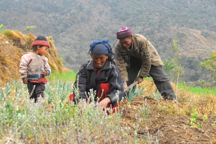 Kanchi Tamang and her husband prepare the fields to sow the seeds provided by Suaahara.