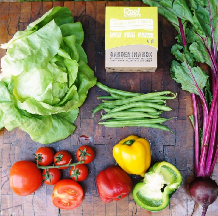 Reel Gardening produce