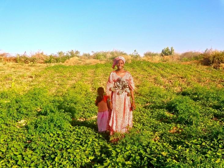 La maraîchère Binta, du village de Dogui Dombe dans le nord du Sénégal, dans son jardin de patate douce