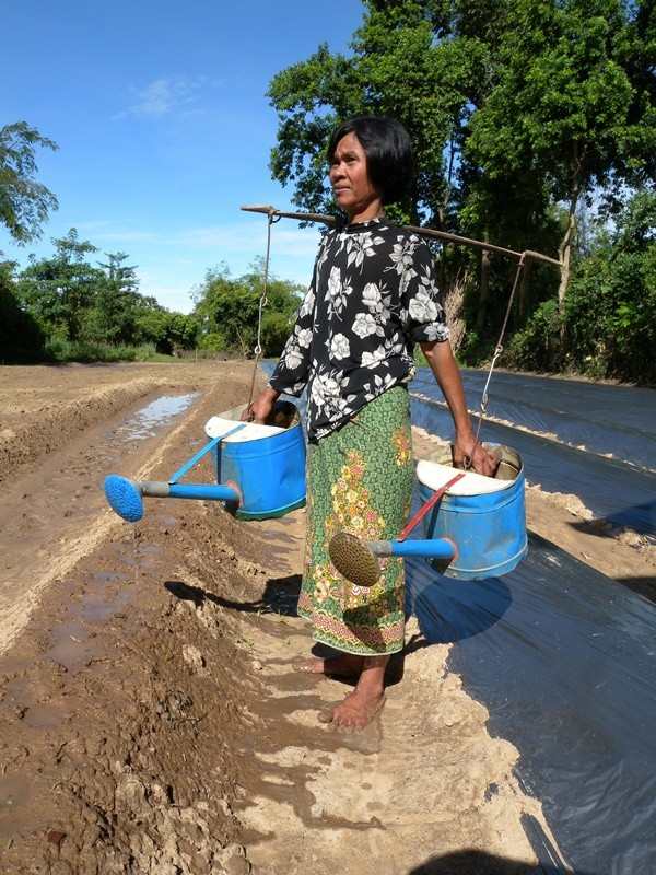 USAID and Sweden have launched Securing Water for Food: A Grand Challenge for Development to address water scarcity, one of the