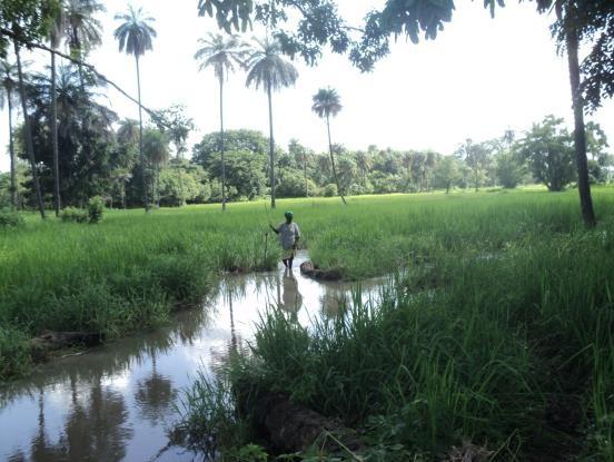 Building Bridges between Communities by Managing Natural Resources