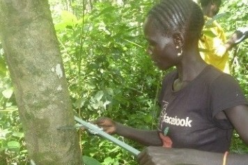 A woman from Gelesha Kebele takes part in the participatory forest resources assessment.