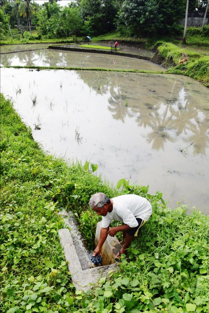Filipino Farmers Triumph Over Drought