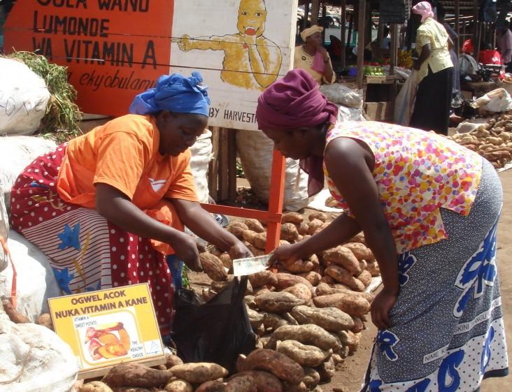 A retailer sells vitamin A-rich orange-fleshed sweet potatoes to a buyer at Kalerwe market near Kampala city.