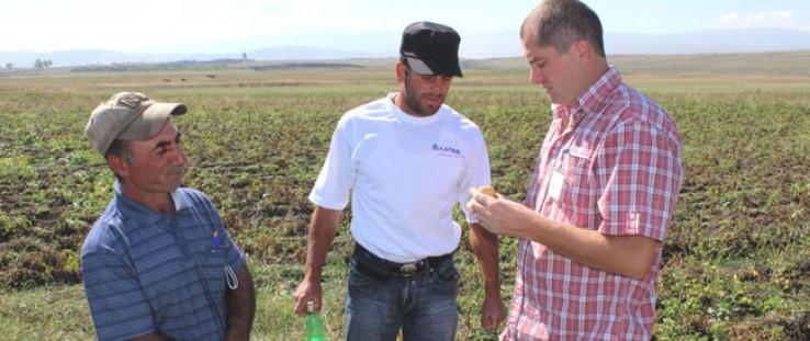 Potato farmers in the Samtskhe Javakheti region of Georgia discuss crop quality.