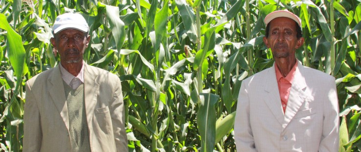 Brothers Bedasa, left, and Debela Ofosea pose where their two maize fields meet.