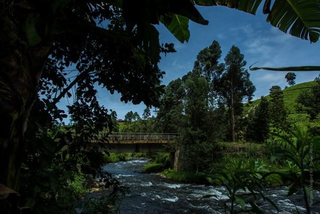 Virunga Power is building a hydro plant to power this valley of Kenyan farmers