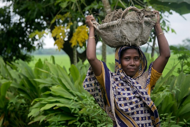 Rahim Begum carries a basket of mud back to her home she is rebuilding in Bangladesh after two cyclones in 2007 and 2009.