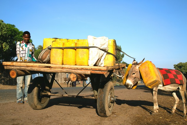 People living in the rural hinterlands travel to the cities in search of water. The trip can take several hours in both directions, which takes up the better part of a day. Those who have donkey carts fill up whatever containers they can and as many as they can afford.
