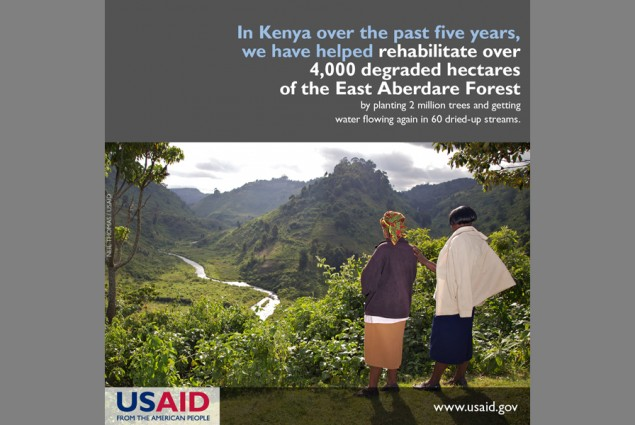 In Kenya over the past five years, we have helped rehabilitate over 4,000 degraded hectares of the East Aberdare Forest by plant
