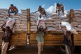 WFP collects and distributes food items for the Somali Region in Ethiopia in warehouses in Jigjiga. Workers offload sorghum bags (50 KG each) from a truck into the warehouse. USAID donated the food.