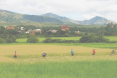 Diversified food production and access to markets enhances food security and livelihoods