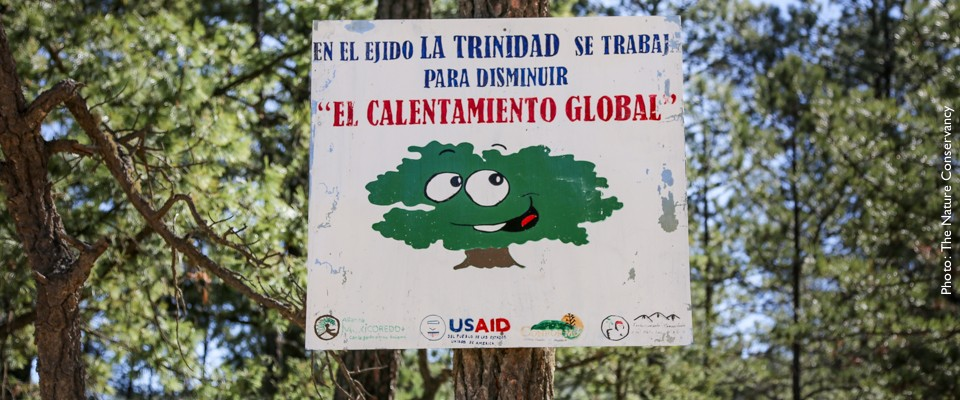 USAID works with the Mexican government and civil society to measure and reduce greenhouse gas emissions from deforestation.
