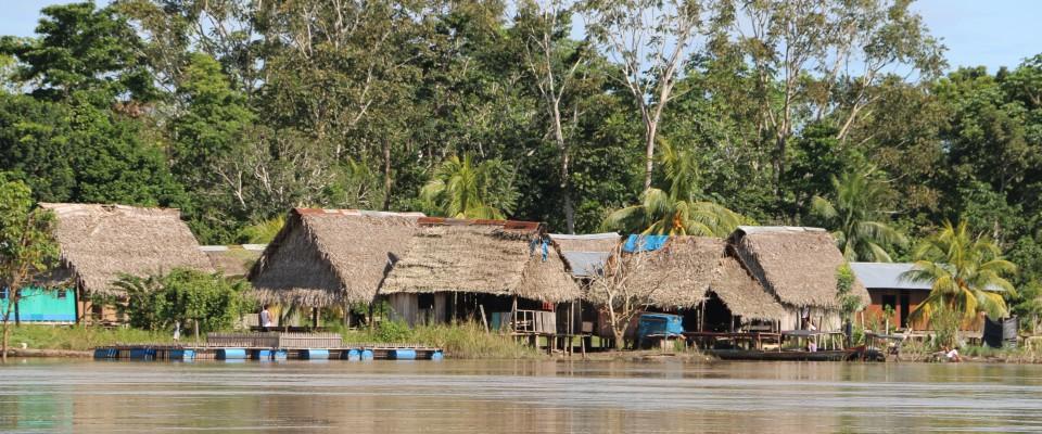 Homes at the native community Nuevo Saposoa in Ucayali