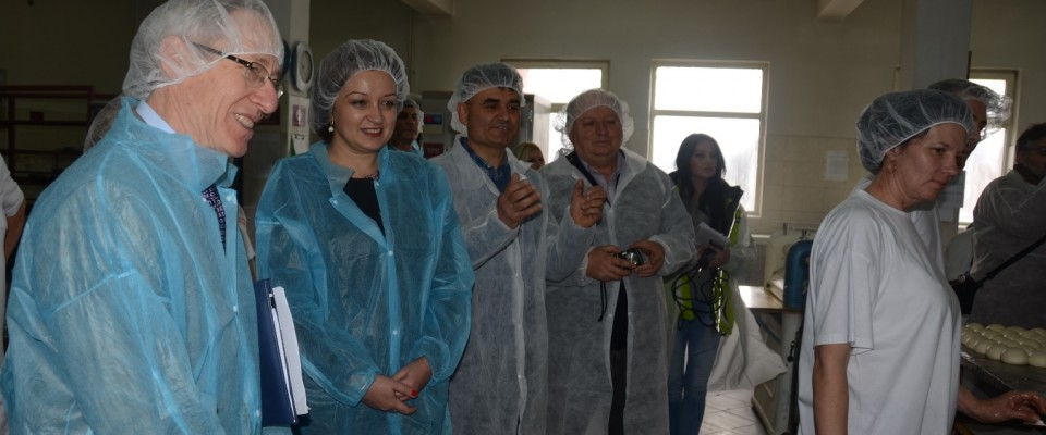 USAID-Supported Business from Prokuplje Exports Traditional Frozen Serbian Pies to the United States