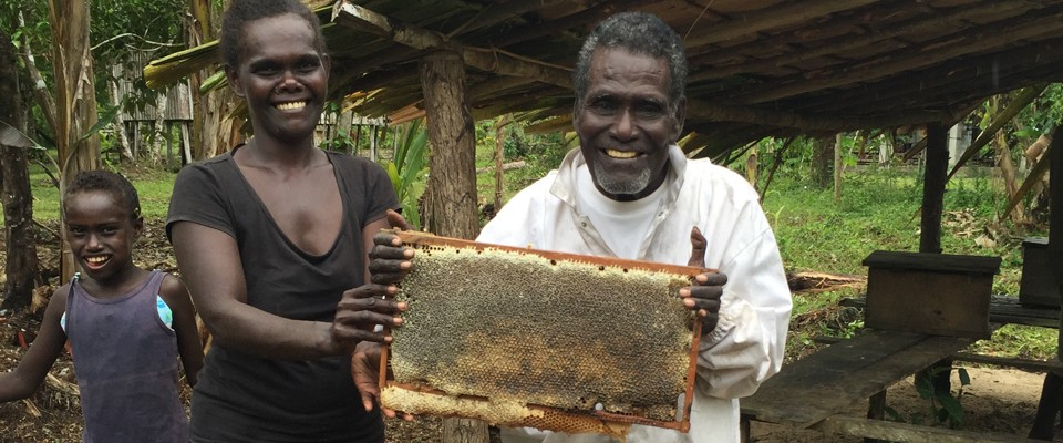 Honey Bee Farming in Solomon Islands
