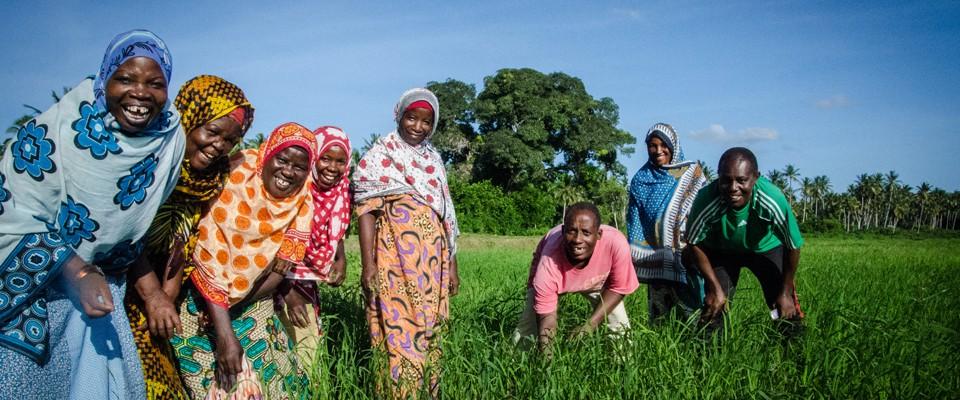 Farmers in Zanzibar