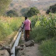 Njolo irrigation scheme in Dedza district, Malawi