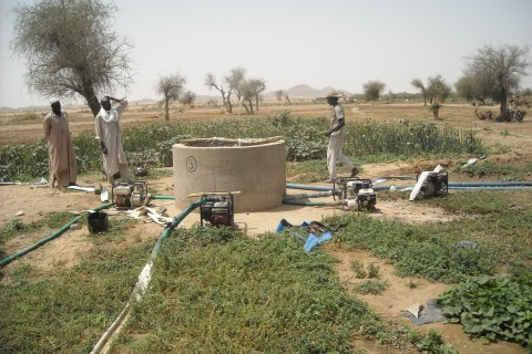 Program beneficiaries surrounding a market garden well