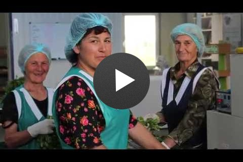 იმერეთის საოცრება - ჰერბია და USAID-ი / Magic in Imereti-Herbia and USAID
