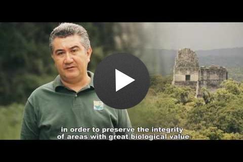 10 Años del Canje de Deuda por Naturaleza en Guatemala, 2006-2016