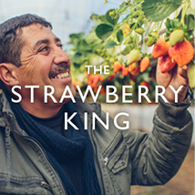 The Strawberry King - Click to read his story. Photo: Bobby Neptune, USAID